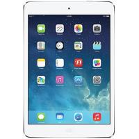 iPad Mini 2 (A1489/A1490)