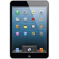 iPad Mini (A1432 / A1454)