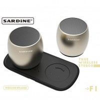 Sardine F1 Mini Bluetooth Speaker (Black)